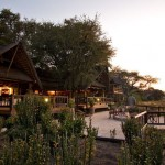 Experience Wellness in the Wild with Orient-Express Africa