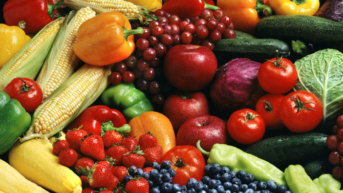 Vegetarian Diets Are More Nutritious Than Animal Food Diets