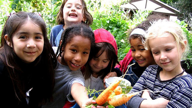Whole Kids Foundation Created by Whole Foods to Combat Childhood Obesity