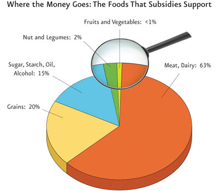 USDA's New MyPlate Icon At Odds With Federal Subsidies for Meat, Dairy