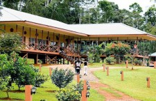 Kabalebo Nature Resort: the Surinamese Rain Forest