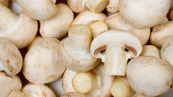 White Mushrooms: Boosting Immunity While Reducing Inflammation