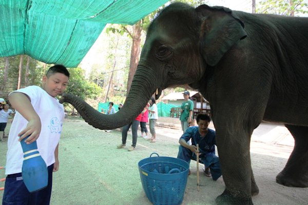 Anantara's Charity Event Funds World's Only Elephant Therapy Project For Autistic Children