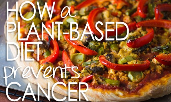 plant based diet prevents cancer