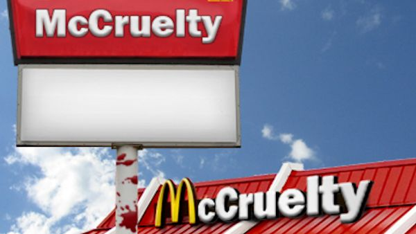 McDonald's Happy Meals: Can you say McCruelty?
