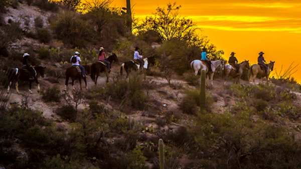 Learn about yourself through horses at Tanque Verde Ranch