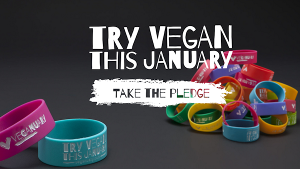 Veganuary campaign encourages people to go vegan in January
