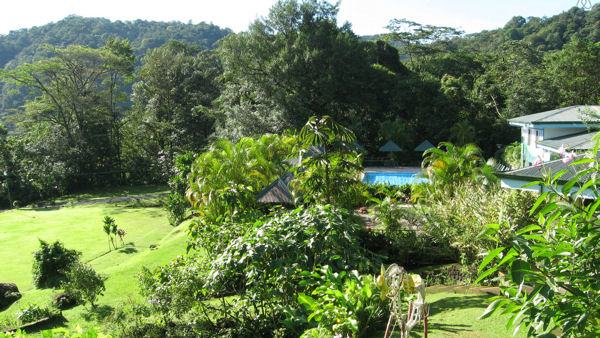 Vegan in Costa Rica: Lands in love Hotel & Resort