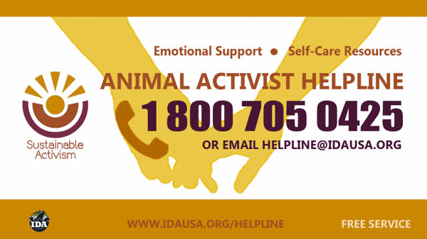 IDA Launches Animal Activist Helpline
