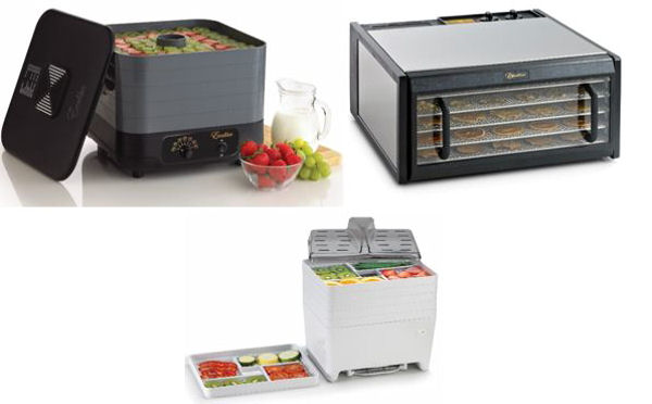 Food Dehydrating 101: How it Works