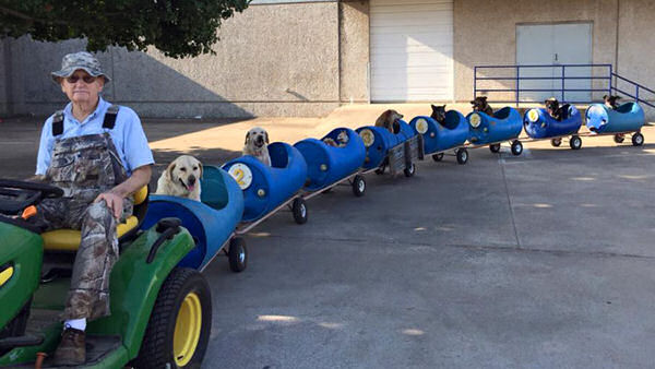 Dogs Have Their Day on Dog Train