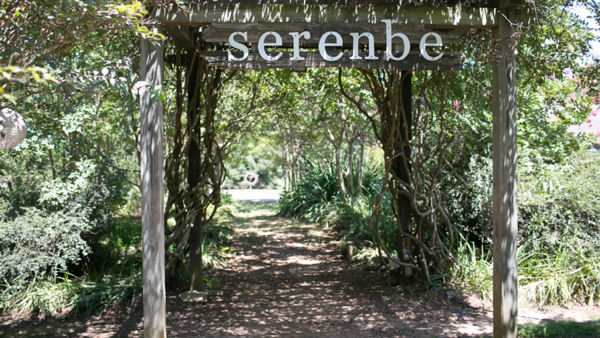 Serenbe: A Luxury Eco-Travel Destination in the U.S.