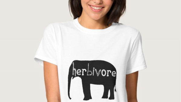 Our Favorite Women's & Men's Vegan T-Shirts
