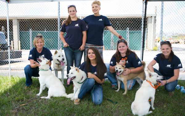 Dogs Rescued From Asian Dog Meat Slaughterhouse Arrive in U.S.