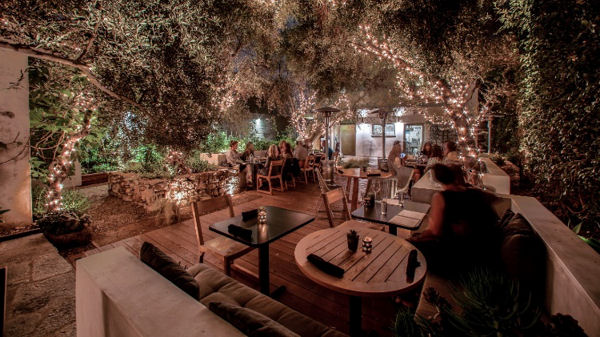 Ring in the New Year with Plant Food + Wine Venice!