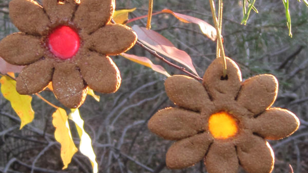 Vegan Recipe: Ginger and Chai-Spiced Suncatcher Ornament Cookies